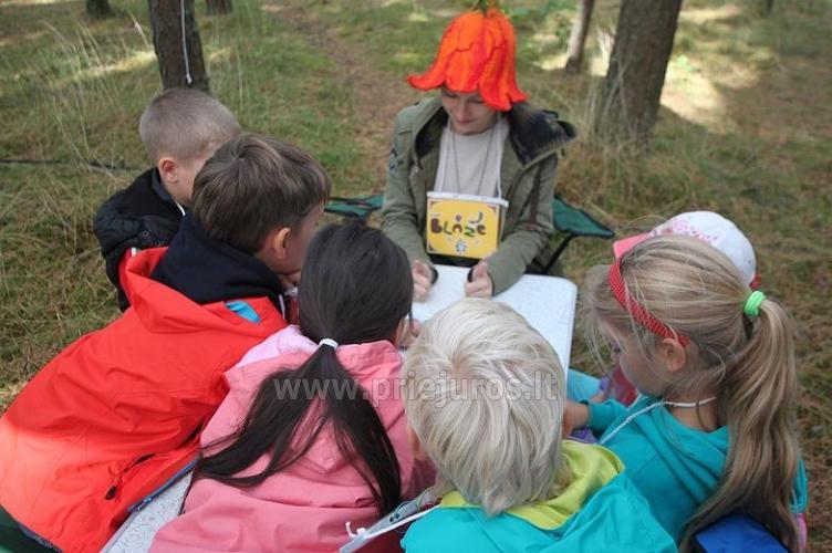 Obóz letni angielski dla dzieci 6-17 lat Narnia-2019 English OUTDOORS - 5