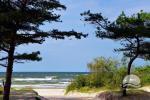 Pokoje do wynajecia w Palanga dla wakacje nad morzem - 6