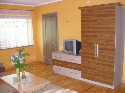 Apartament w miejscowości Preila, na Mierzei Kurońskiej, w pobliżu Morza Bałtyckiego - 2