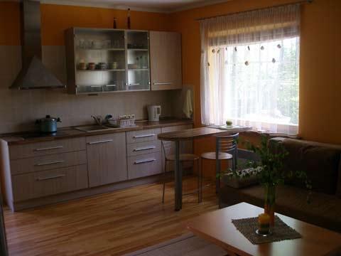 Apartament w miejscowości Preila, na Mierzei Kurońskiej, w pobliżu Morza Bałtyckiego - 5