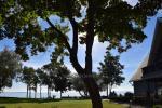 Apartament z tarasem i widokiem na lagunę w Mierzei Kurońskiej - 8