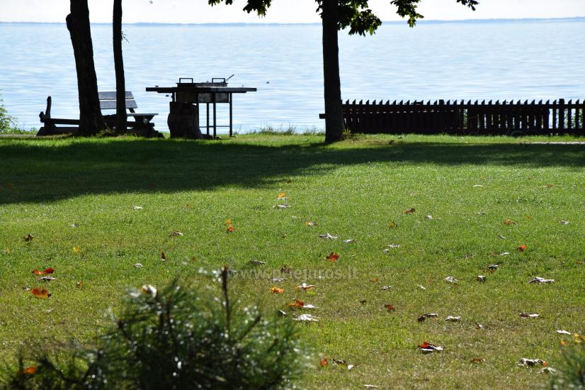 Apartament z tarasem i widokiem na lagunę w Mierzei Kurońskiej - 9