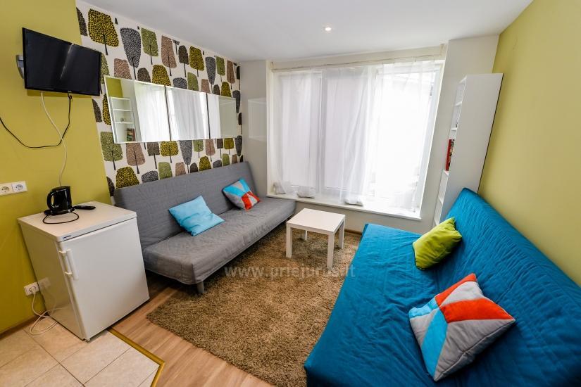 Nowo wyremontowany apartament na wynajem w Juodkrante, Mierzei Kurońskiej - 2