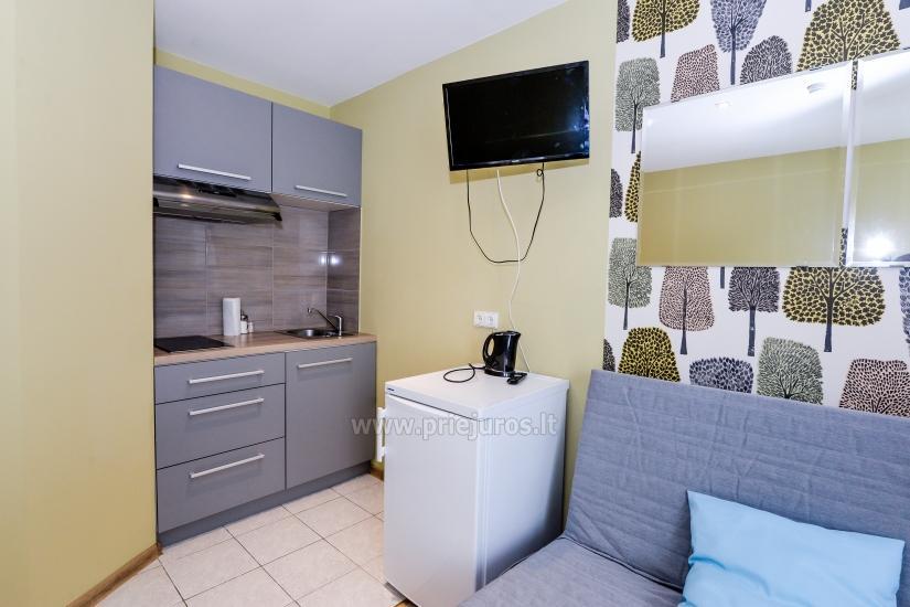 Nowo wyremontowany apartament na wynajem w Juodkrante, Mierzei Kurońskiej - 5
