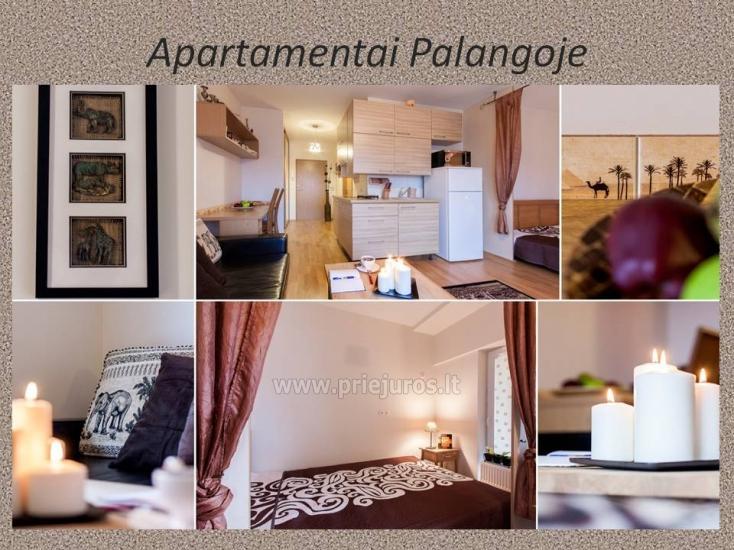1 pokój, 4 miejsca do spania mieszkanie do wynajęcia w Połądze - 1