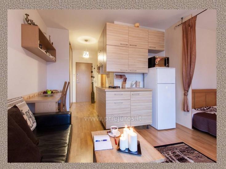 1 pokój, 4 miejsca do spania mieszkanie do wynajęcia w Połądze - 3