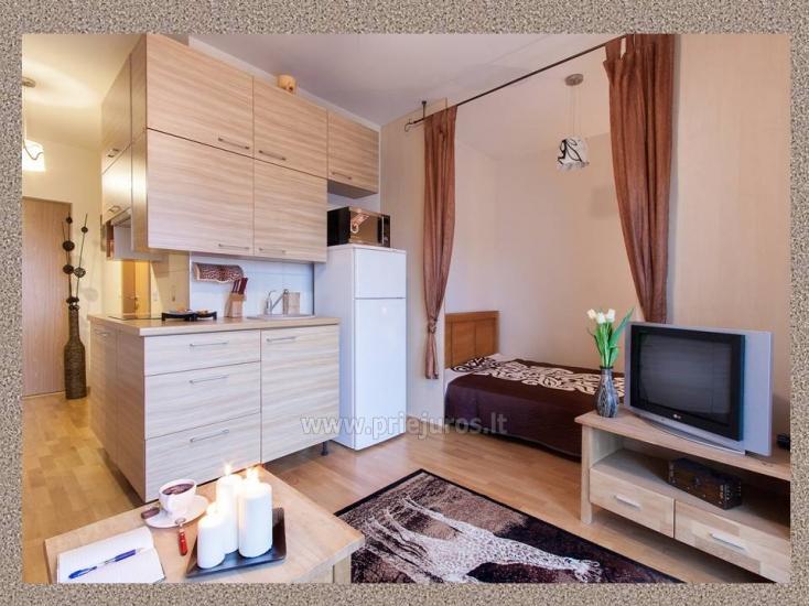 1 pokój, 4 miejsca do spania mieszkanie do wynajęcia w Połądze - 4