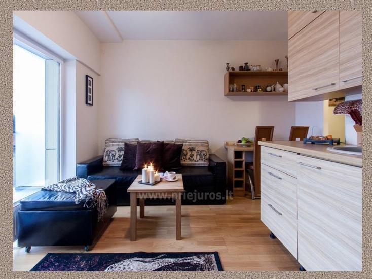 1 pokój, 4 miejsca do spania mieszkanie do wynajęcia w Połądze - 6