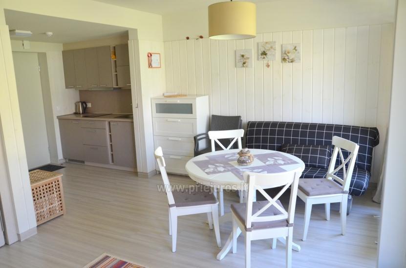 Nowe i przytulne jedno pokojowe mieszkanie w Preila, Mierzei Kurońskiej - 3