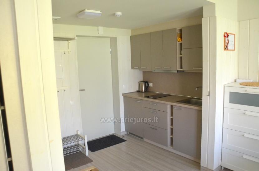 Nowe i przytulne jedno pokojowe mieszkanie w Preila, Mierzei Kurońskiej - 4