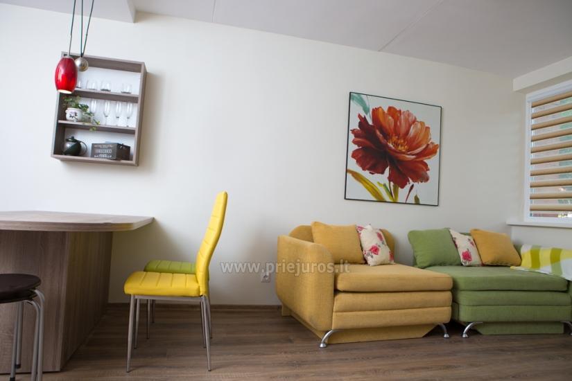 Krótkoterminowy wynajem mieszkania w Kłajpedzie, Litwa - 10