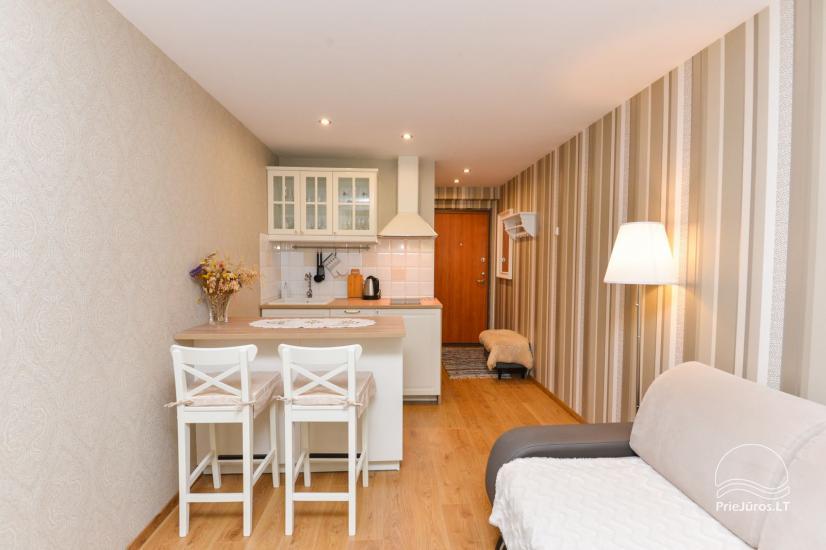 1 pokojowe mieszkanie do wynajecia w Nidzie - 2