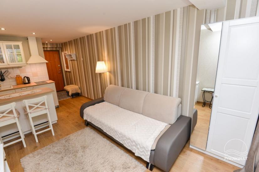 1 pokojowe mieszkanie do wynajecia w Nidzie - 8