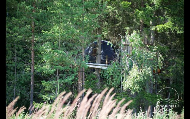 Małe domy wakacyjne do wynajęcia niedaleko od Sventoji (sauna, konie) - 10