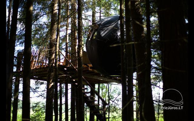 Małe domy wakacyjne do wynajęcia niedaleko od Sventoji (sauna, konie) - 15