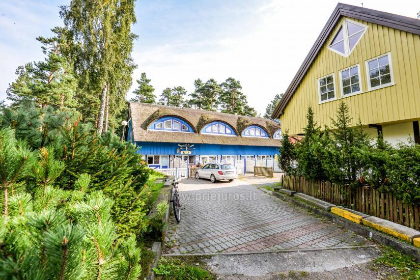 Mieszkania do wynajęcia w Mierzei Kurońskiej - 7