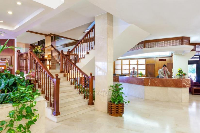 Masaru apartamenty z pięknym subtropikalnym ogrodzie - 9