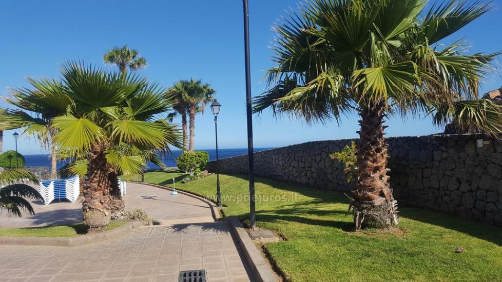 Rocas Del Mar - Costa del Silencio kompleks apartamentów - 3