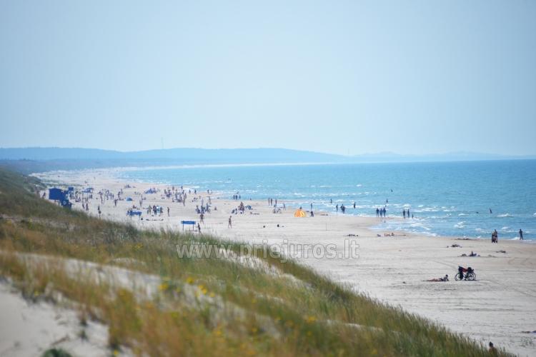 Szerokie plaże i wydmy Mierzei Kurońskiej (Litwa)