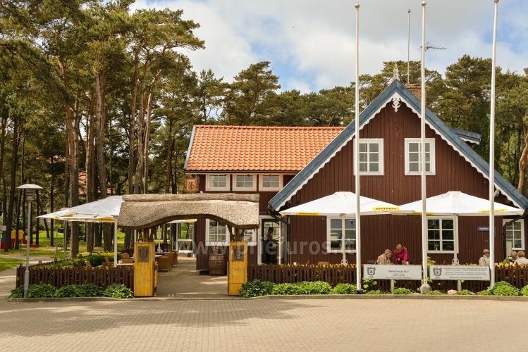 Restauracja Nidos Seklycia - 20