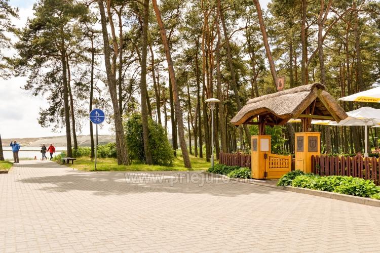 Restauracja Nidos Seklycia - 24