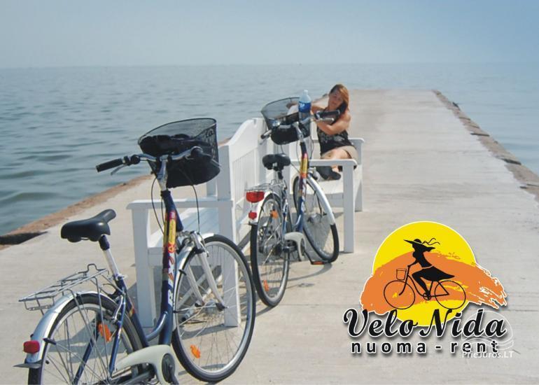 Wypozyczalnia rowerow w Klajpedzie, w Nida, w Juodkrante