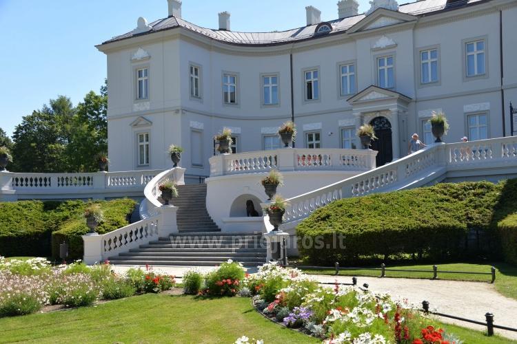 Palanga Park Botaniczny, Muzeum Bursztynu (Litwa)