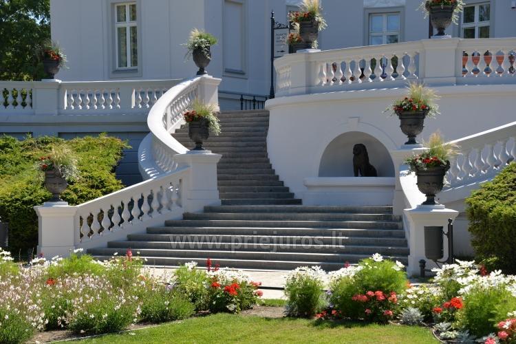 Palanga Park Botaniczny, Muzeum Bursztynu (Litwa) - 3