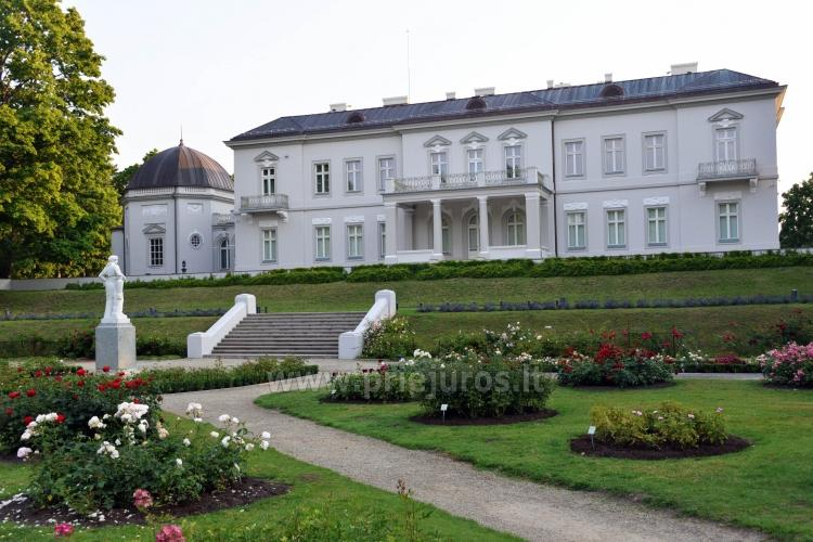 Palanga Park Botaniczny, Muzeum Bursztynu (Litwa) - 10