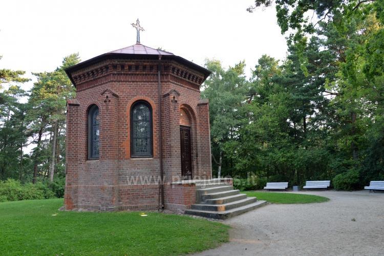 Palanga Park Botaniczny, Muzeum Bursztynu (Litwa) - 15
