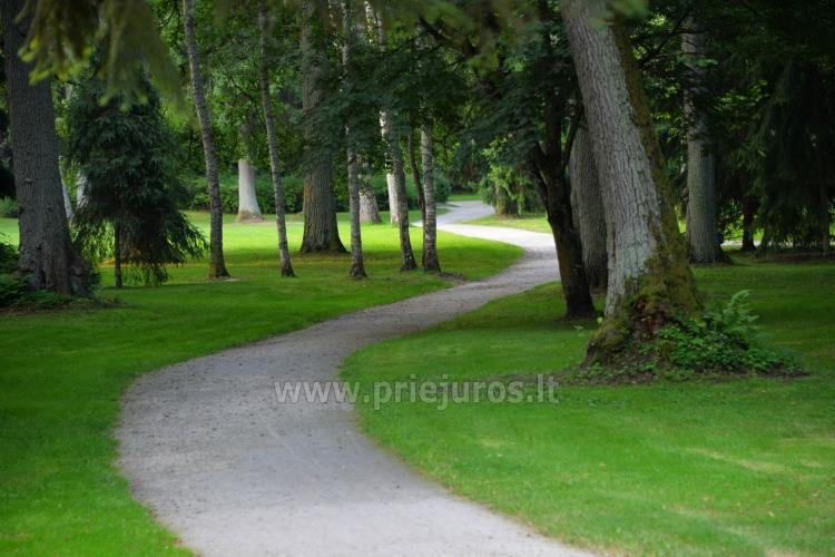 Palanga Park Botaniczny, Muzeum Bursztynu (Litwa) - 17