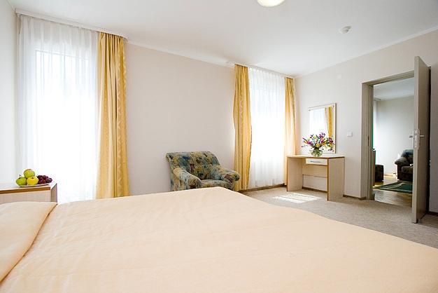 Bilard w Hotel Austeja *** - 12