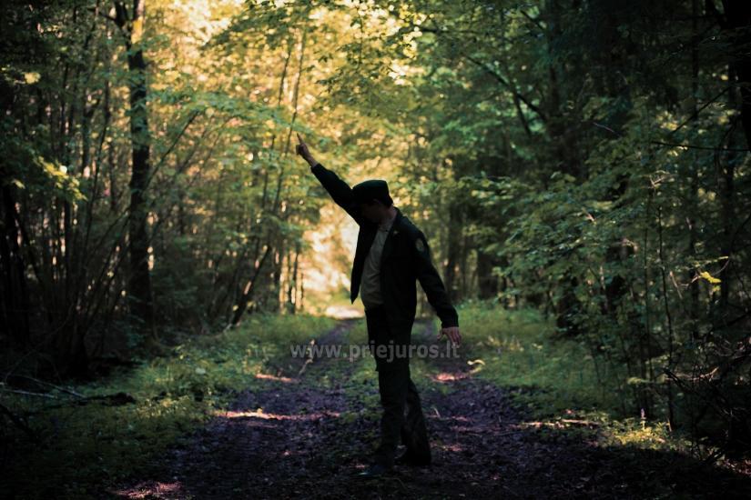 Wycieczki w lesie - 4