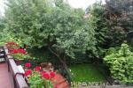 Dom z kominkiem do wynajęcia w Nidzie - 12