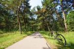 Ścieżka rowerowa nad morzem - około 300 m od willi - 5